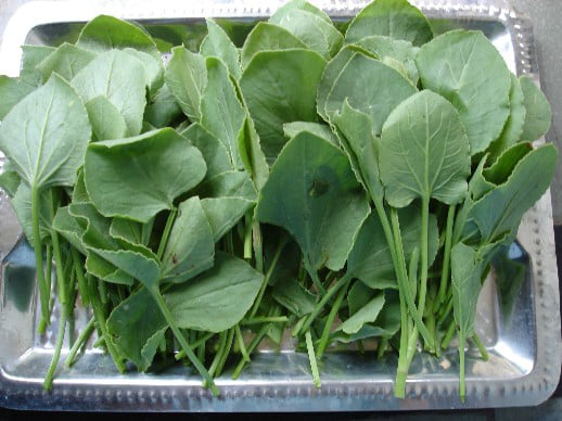 Ambat Chuka Bhaji (Green sorrel curry)