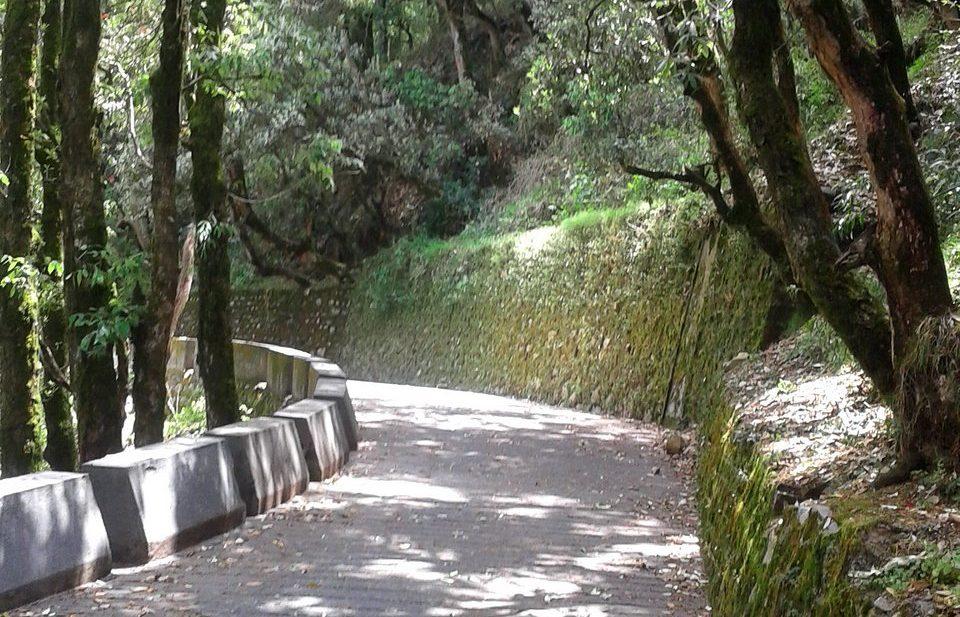 Landour walk